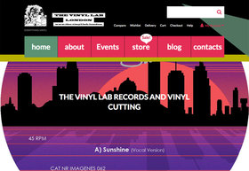 Vinyl lab article