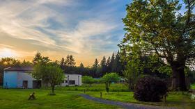 Northwest vipassana center article
