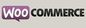 Woocommerce article