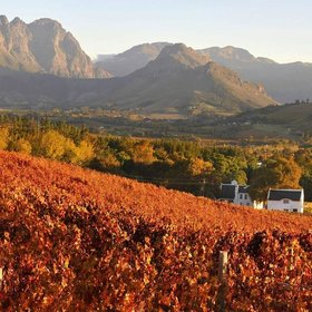 8 wine regions to discover in 2017 south africa 720x720 slideshow article