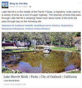 Blog by the bay   lake merritt is in the middle of the pacific... article