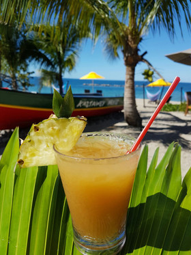 Nevis  kastawey smash by the sea at four seasons credit fsnevis article