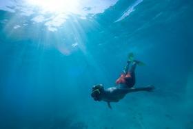 Antigua cades bay swim and snorkel tour credit island routes article