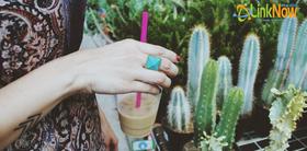 Cactus article