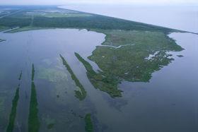 Louisiana wetlands article