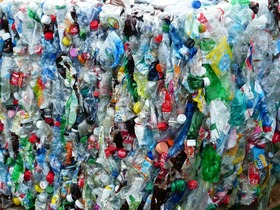Plastic waste article