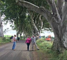 Dark hedges naturally article