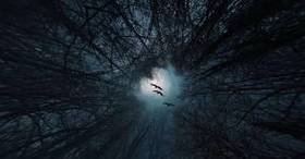 Facts about nyctophobia the fear of night and darkness article
