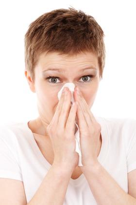 Allergy cold disease flu 41284 article