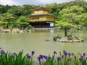 Japan4 article