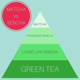 Matcha vs sencha large article