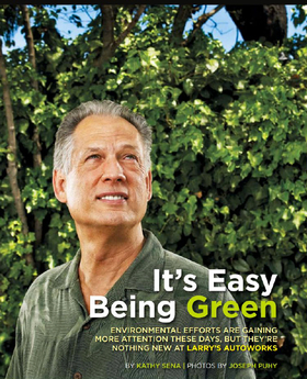 Easy bring green article