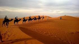 Desert article