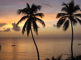 Tobago sunset  3 article