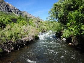 Provo river article