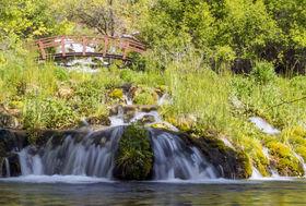 Cascade springs article