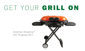 Grill article