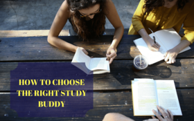 How to choose the right study buddy article