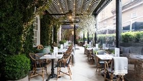 Dalloway terrace article