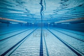 Swimming pool article