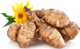 Jerusalem artichoke small article