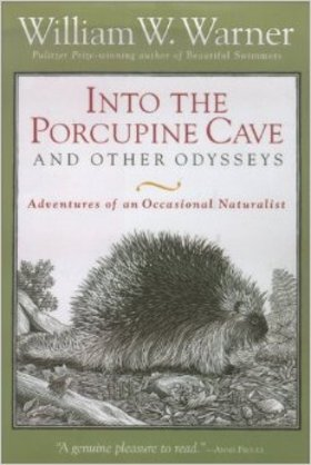 Into the porcupine cave article