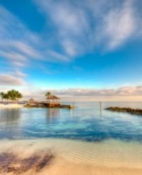 461494 palmetto bay plantation  article