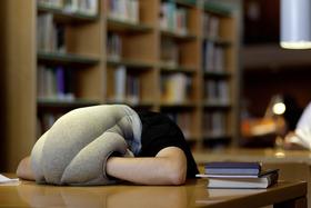 Ostrich pillow article