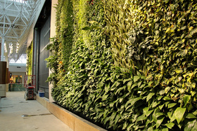 Green wall article
