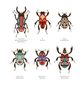 Bug article