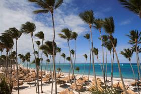 Palma real beach article