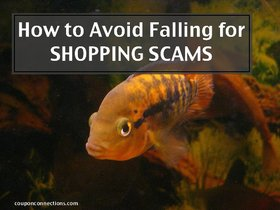Howtoavoidfallingforshoppingscams article