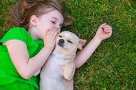 Choosing a family pet image resizing article