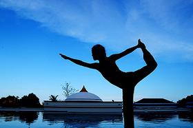 Vitals absolutesanctuary thailandyoga article