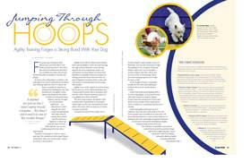 Petguide agility 05.06.14 page 1 article