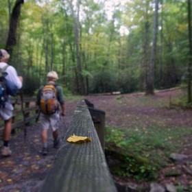 Hiking 300x300 article
