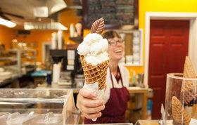 Jellyfish ice cream intro 8753 article