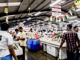 20140807 dubai fish market stalls naomi bishop article