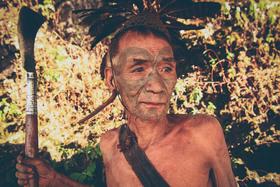 Nagaland 6361 article