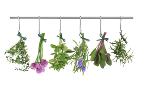 Drying herbs article