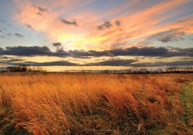 December sunset at occoquan bay national wildlife refuge article