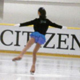 Ice skating rinks p article