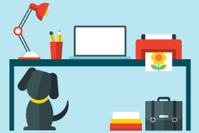Dogs at work article