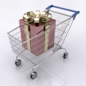 Shopping cart 200x200 article
