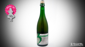 Oudegeuze review article
