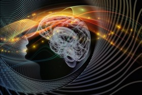 Brain mind 141024 article