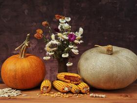 Elegant halloween decorations article