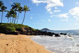 Maui article