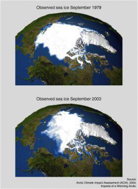 Sea ice 1979 and 2003.img assist custom 280x383 article