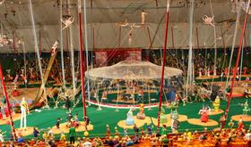 Circus museum article